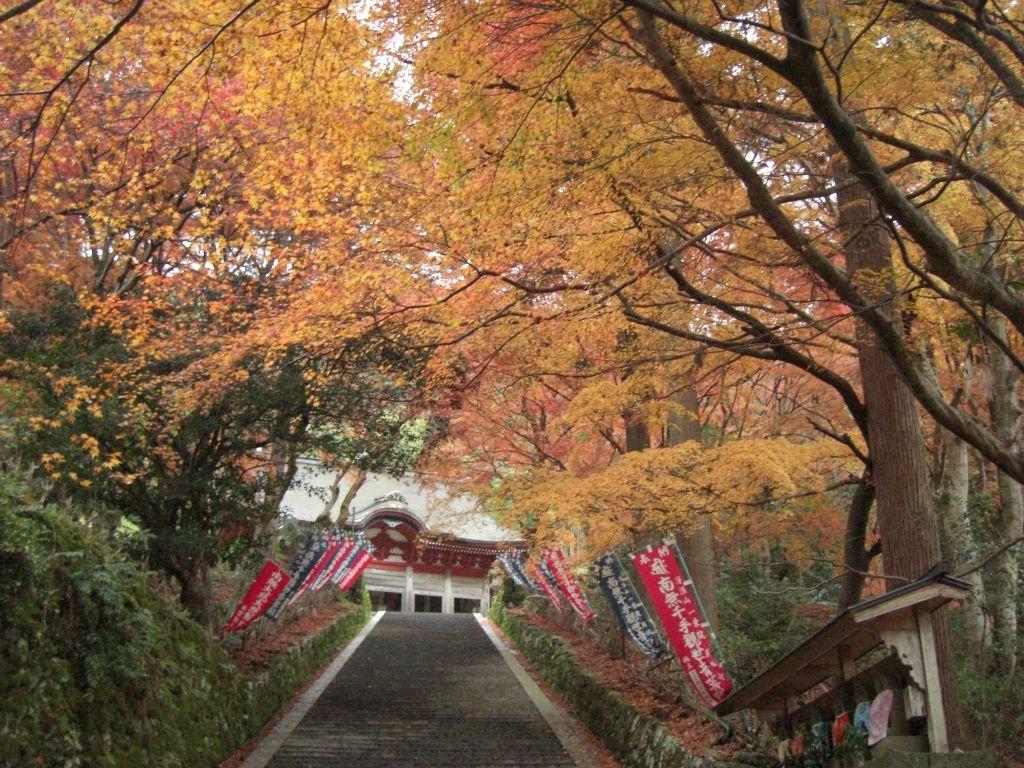 鰐淵寺(Gakuen-ji Temple)